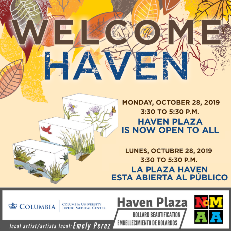 Welcome Haven – Bollard Beautification Unveiling